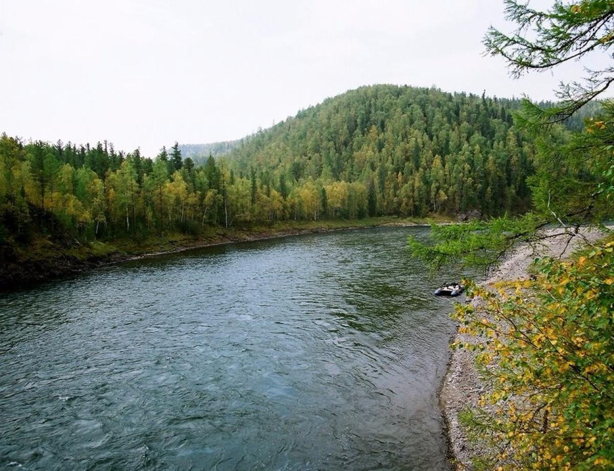 Красноярский край ирбейский район рыбалка на реке агул