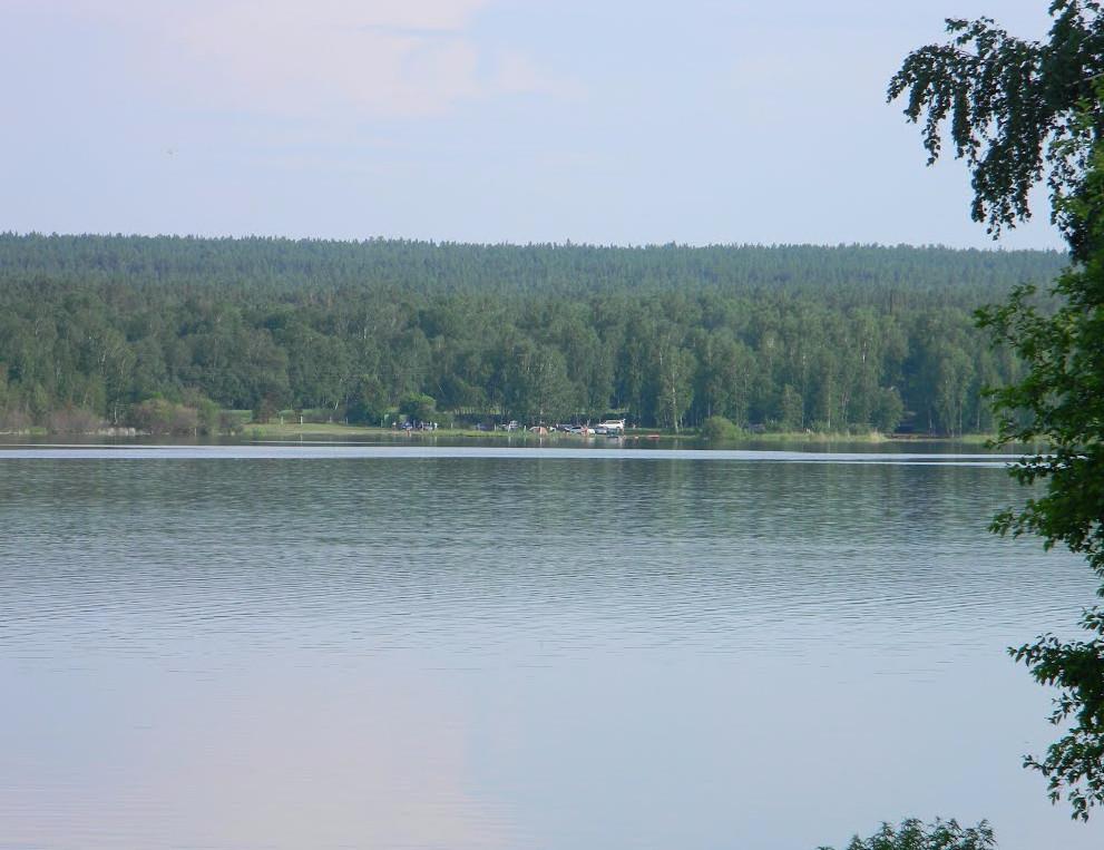 Озеро москвичево в новосибирске фото годы является