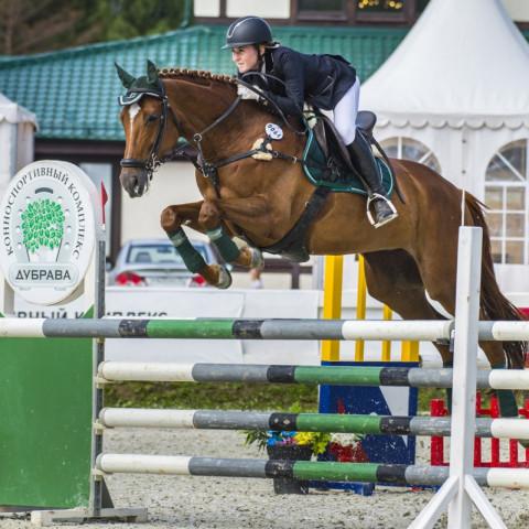 В Хакасии состоятся соревнования по конному спорту