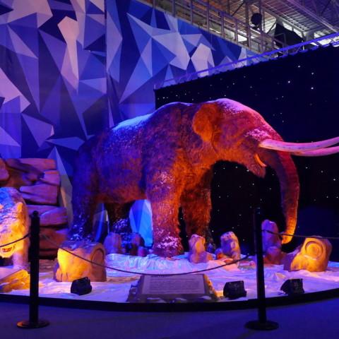 Абакан,Республика Хакасия. Выставка «Мир ледникового периода»!