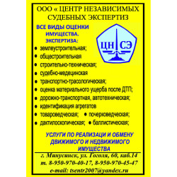"""ООО """"Центр независимых судебных экспертиз"""""""
