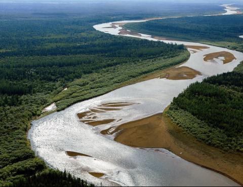 Эколого-этнографический природный заказник «Елогуйский»