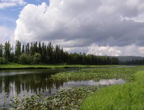 Центральносибирский биосферный заповедник
