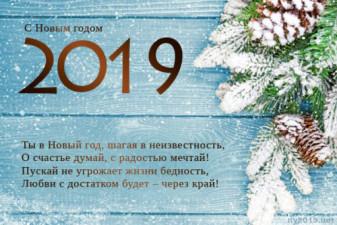 С Наступающим 2019 годом!