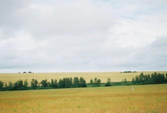 Природа Боготольского района