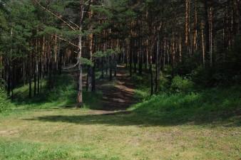 Природа Иланского района
