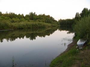 Природа Пировского района
