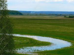 Природа Сухобузимского района